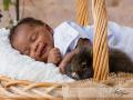 Baby-Easter-Bunny-Rabbit-Rabbits-Bunnies-Basket-Easter-Basket-Easter Bunny-Brick-wall-Statesboro