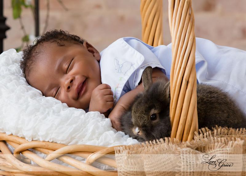 Baby - Easter-Bunny-Rabbit-Rabbits -Bunnies-Basket-Easter Basket-Easter Bunny - Babies- Brick wall- Statesboro - In Studio